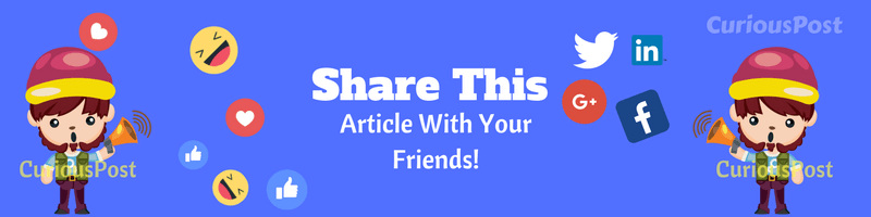 Share This Article